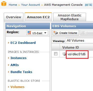 Amazon EC2 Volume ID